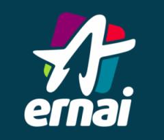 ernai-462x395-300x256